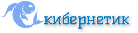 1_Primary_logo_on_transparent_300x69