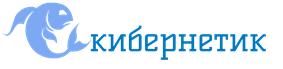 2_Flat_logo_on_transparent_300x69
